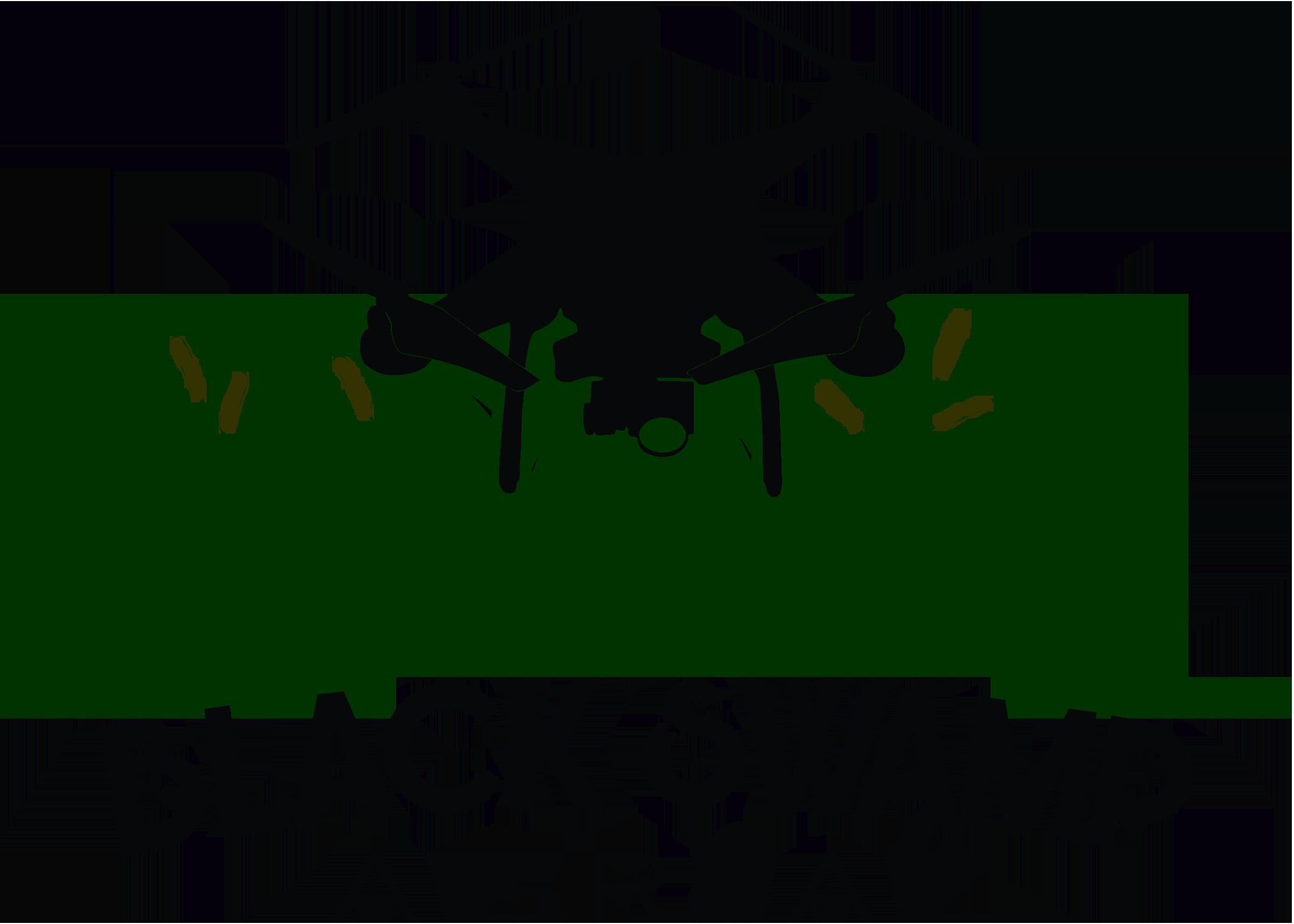 Black Swamp Aerial Photo & Video
