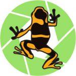 Dart-Frog 3D